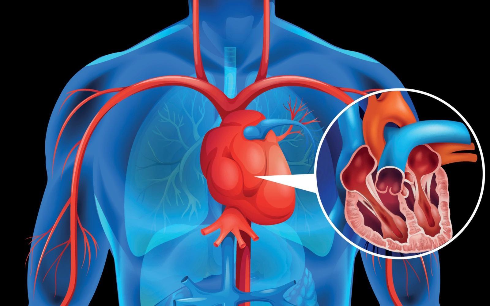 miért befolyásolja a prosztatagyulladás az erekciót