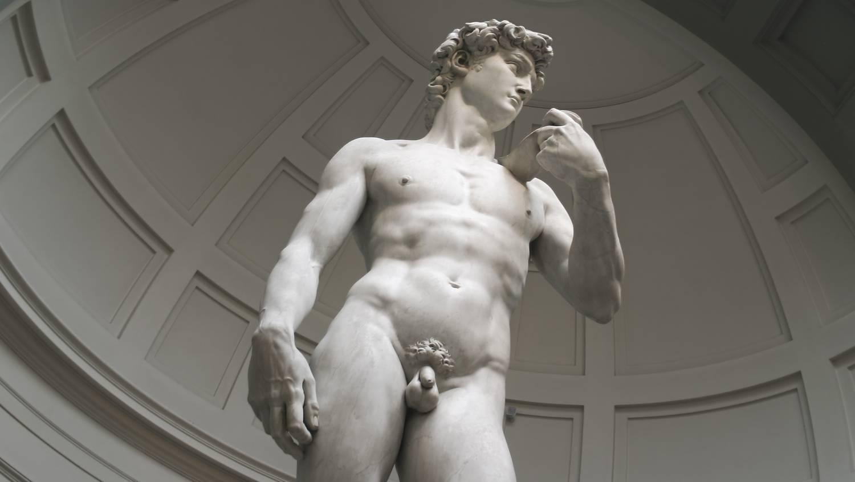 mik a pénisz formái a férfiaknál ágyékfájdalom hosszan tartó erekció után
