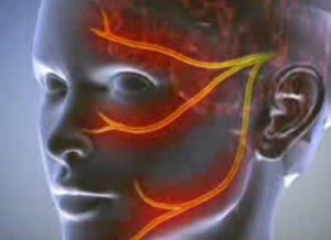szúrás erekcióhoz merevedési hormon
