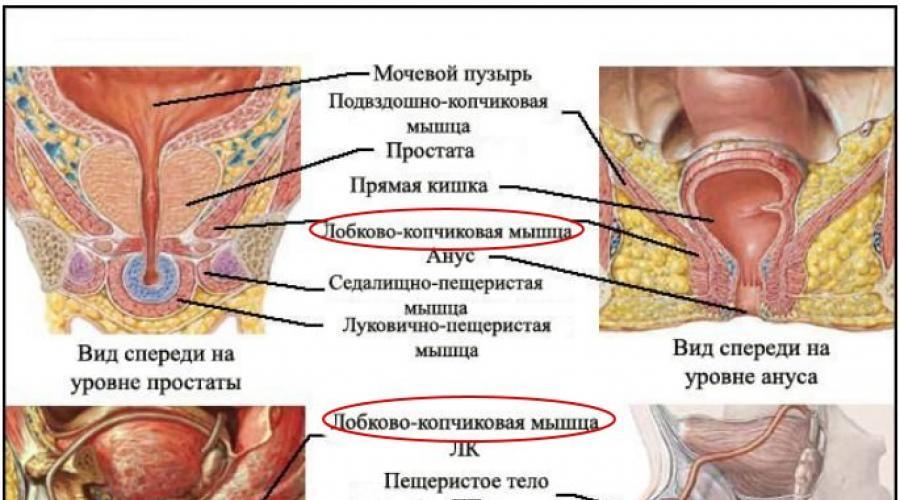 befolyásolhatja az alkohol az erekciót csökkent erekció 40 évesen